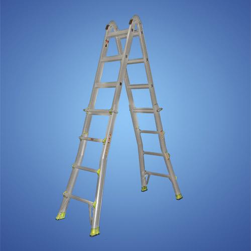 Telescopic Ladder System-1010